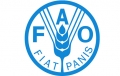 FAO Water